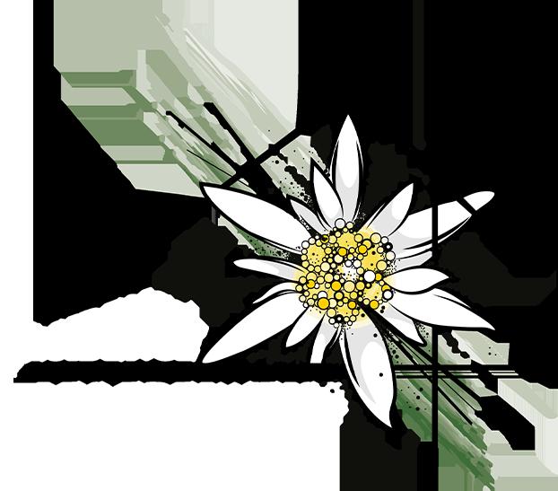 Résidence Edelweiss